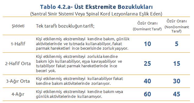 Tablo4.2.a