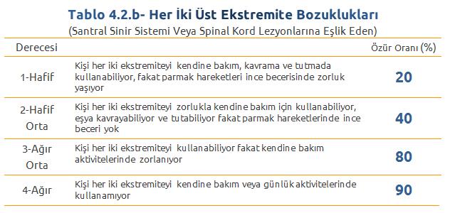 Tablo4.2.b